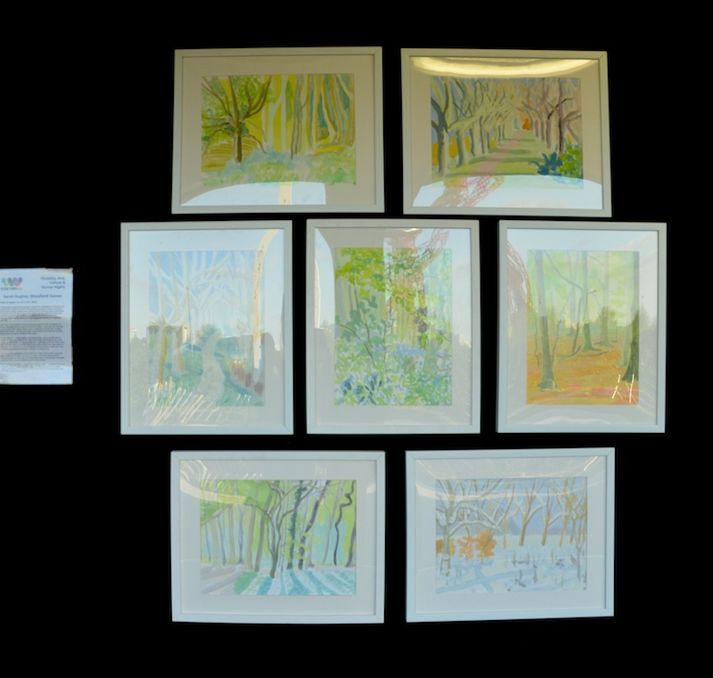Woodland Scenes: paintings by Sarah Hughes.